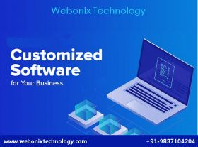 Custom Software Development Company in Meerut