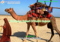 holidays in rajasthan  | Panache Tours