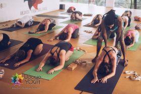 200 Hours Yoga Teacher Training