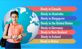 Study Overseas and Immigration Services