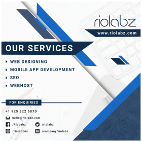 Riolabz software development