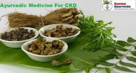 Ayurvedic medicine for kidney disease
