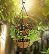 Online Garden Store