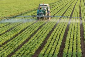 Find Cost-Effective Modern Farming Methods