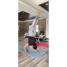 Regular yoga classes and group yoga classes in hyd