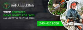 Axe Tree Pros | Affordable Tree Removal and Trimmi
