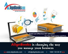 Online & Offline Accounting Software