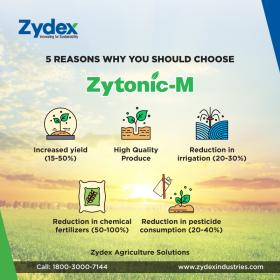 Zytonic-M - Micorrhiza Biofertlizer