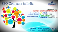 SEO Service in India