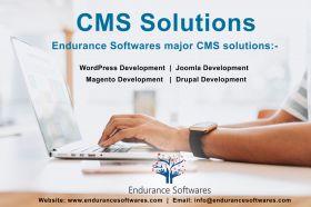 CMS Solutions  | CMS Services |Endurance Softwares