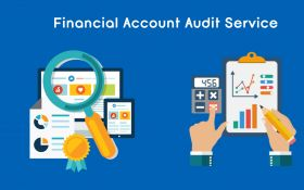 Financial Account Audit Service