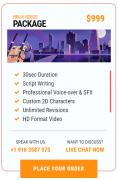Ninja Video Package