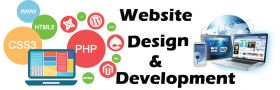 Website Design and Development Company in Vadodara