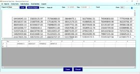 Excel Numerical Data Entry