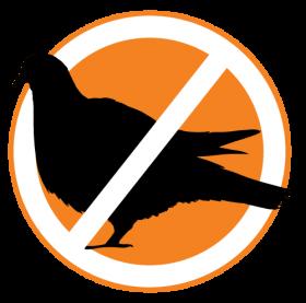 Bird (Pigeon) Control Service
