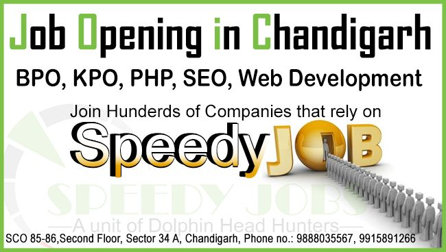Speedy Jobs Chandigarh