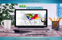 web design & developemnt