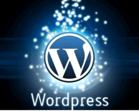 Wodpress Customization services
