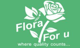 floraforu- flower shop in udaipur online florist