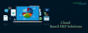 custom Accounting software development Services