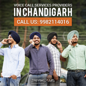 Voice Call Services Providers In Chandigarh