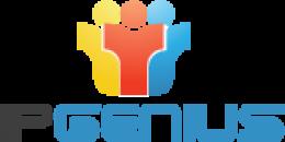IPGenius IT Services