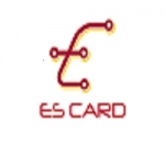Electrical card
