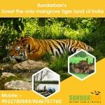Sundarban Nature Tour